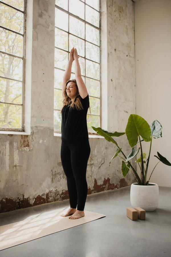 meditatie + yoga // jaarabonnement